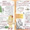 Книга - Витівка